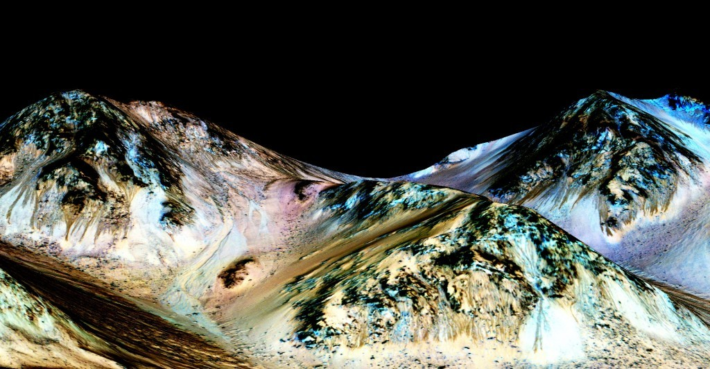 What Can We Expect From the Water on Mars?